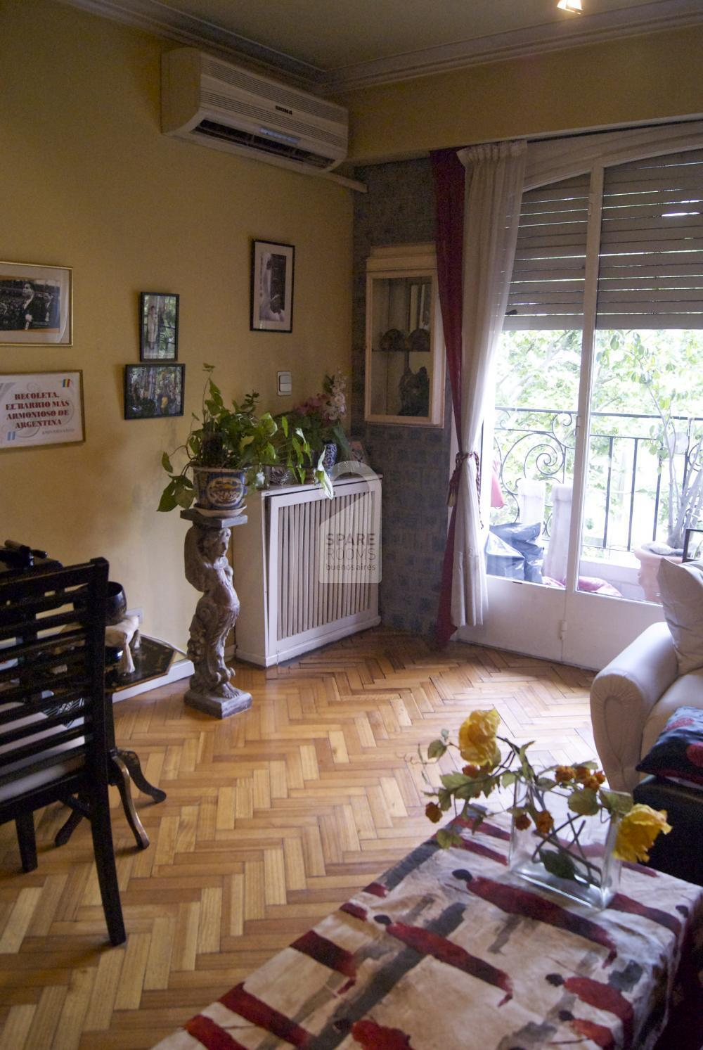 The living room at the apartment in Recoleta