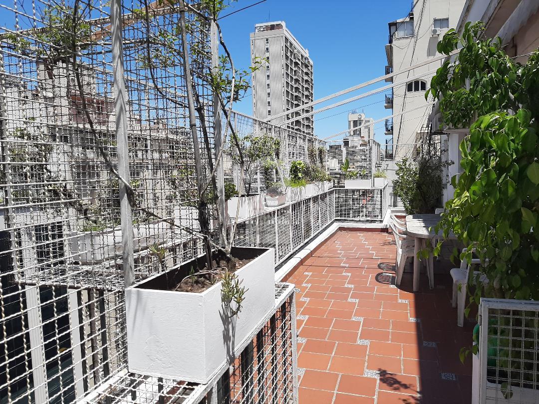 The terraced balcony