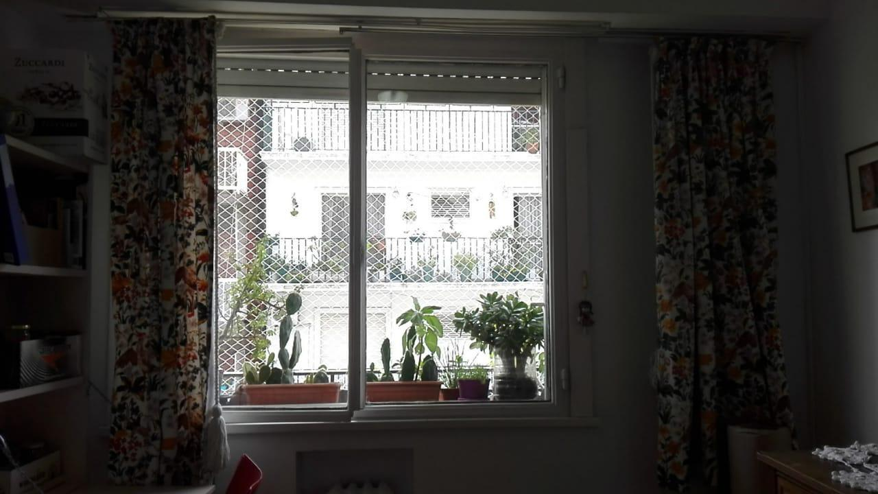 The window full of plants